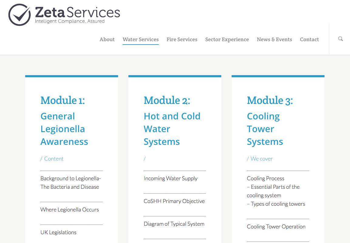 Zeta Services responsive website development
